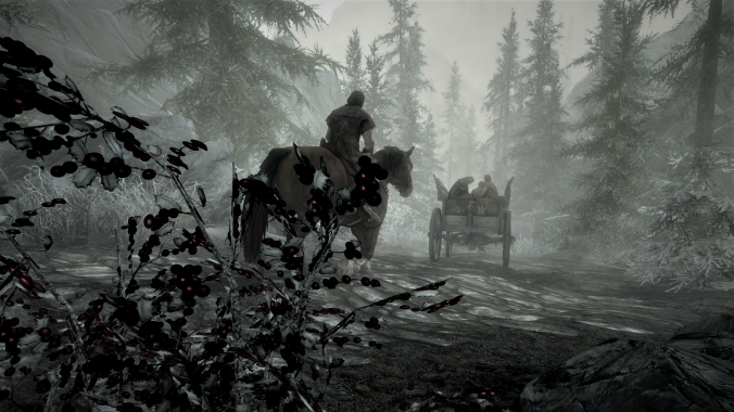skyrim horse and carriage passing by.png