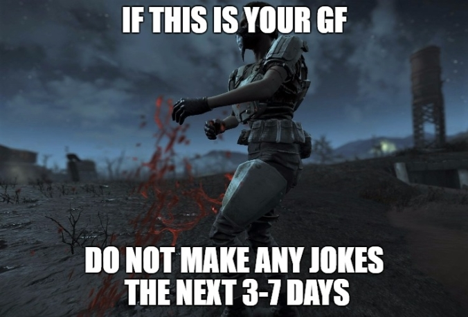 fallout 4 if this is your gf do not make jokes.jpg