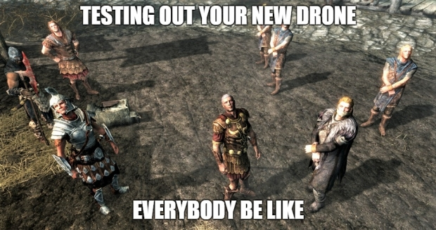 skyrim everybody be like when testing out your drone.jpg