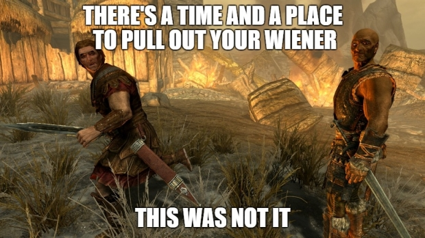 skyrim there is a time and a place to pull out your wiener.jpg