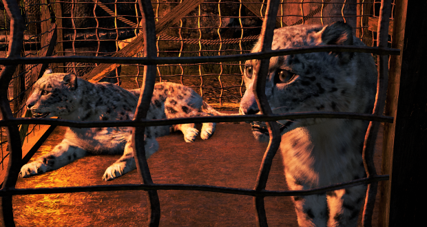 Far Cry 4 snow leopard in cage 298110_20170629204739_1 (1).png